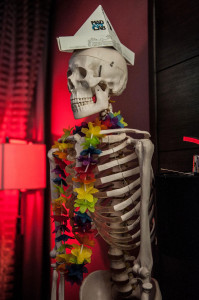 a skeleton wearing a multicolored lei and a folded paper hat with the Mad Art Lab logo on it. Photo by Jamie Bernstein.